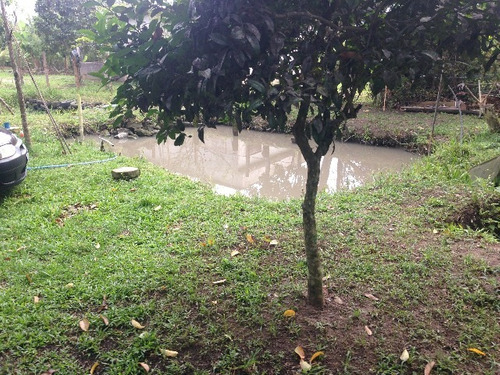 linda casa no cibratel ii, em itanhaém, 4339