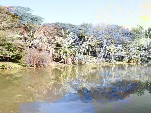 linda chácara em são lourenço com lago e piscina