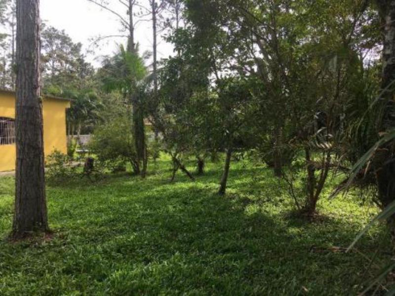 linda chácara no jd das palmeiras em itanhaém - 5593 | npc