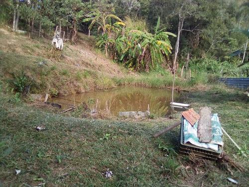 linda chácara plana, rica em água, lugar de rara beleza