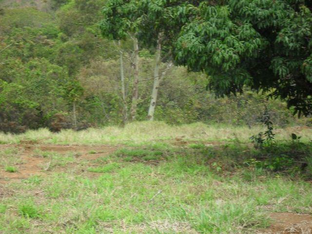 linda fazenda em capitólio mg, a 7 km do centro da cidade