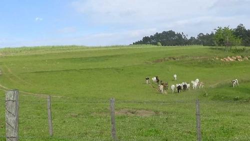 linda fazenda em itirapina-sp
