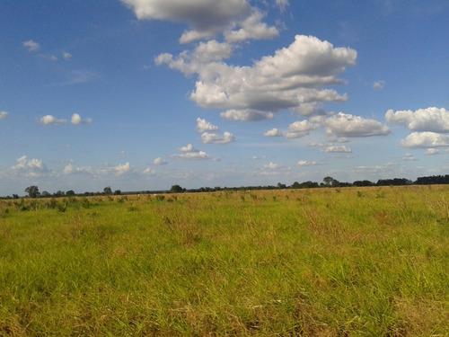 linda fazenda no sul do piaui