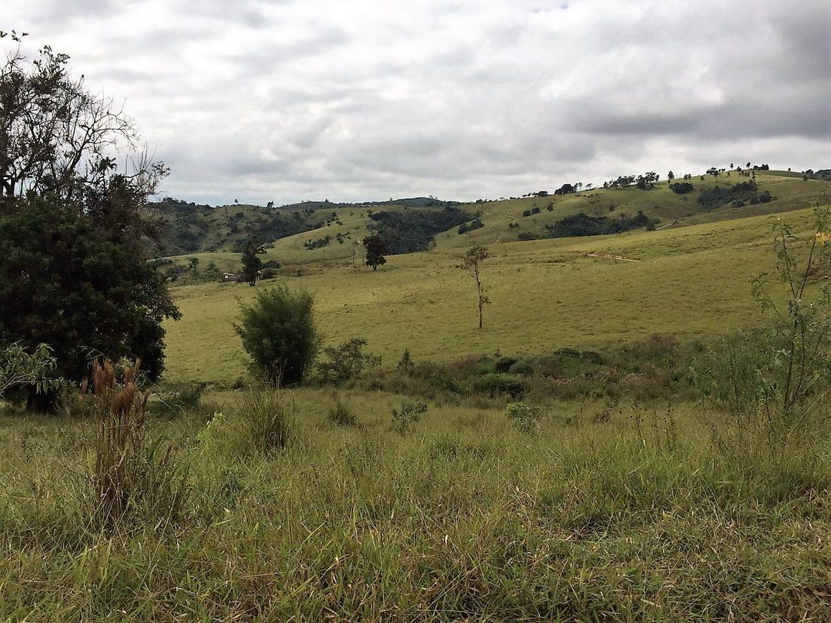 linda fazenda para criação de gado ou loteamento!