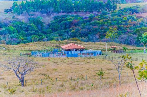 linda fazenda pecuaria serra da canastra capitolio-mg (4181)