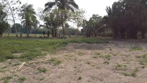 linda propiedad agricola en venta