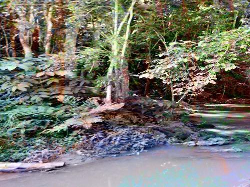 linda sítio com cachoeira e 2 lagos bem localizado