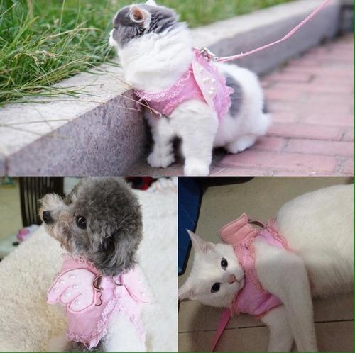 lindo arnés para gatos y perros