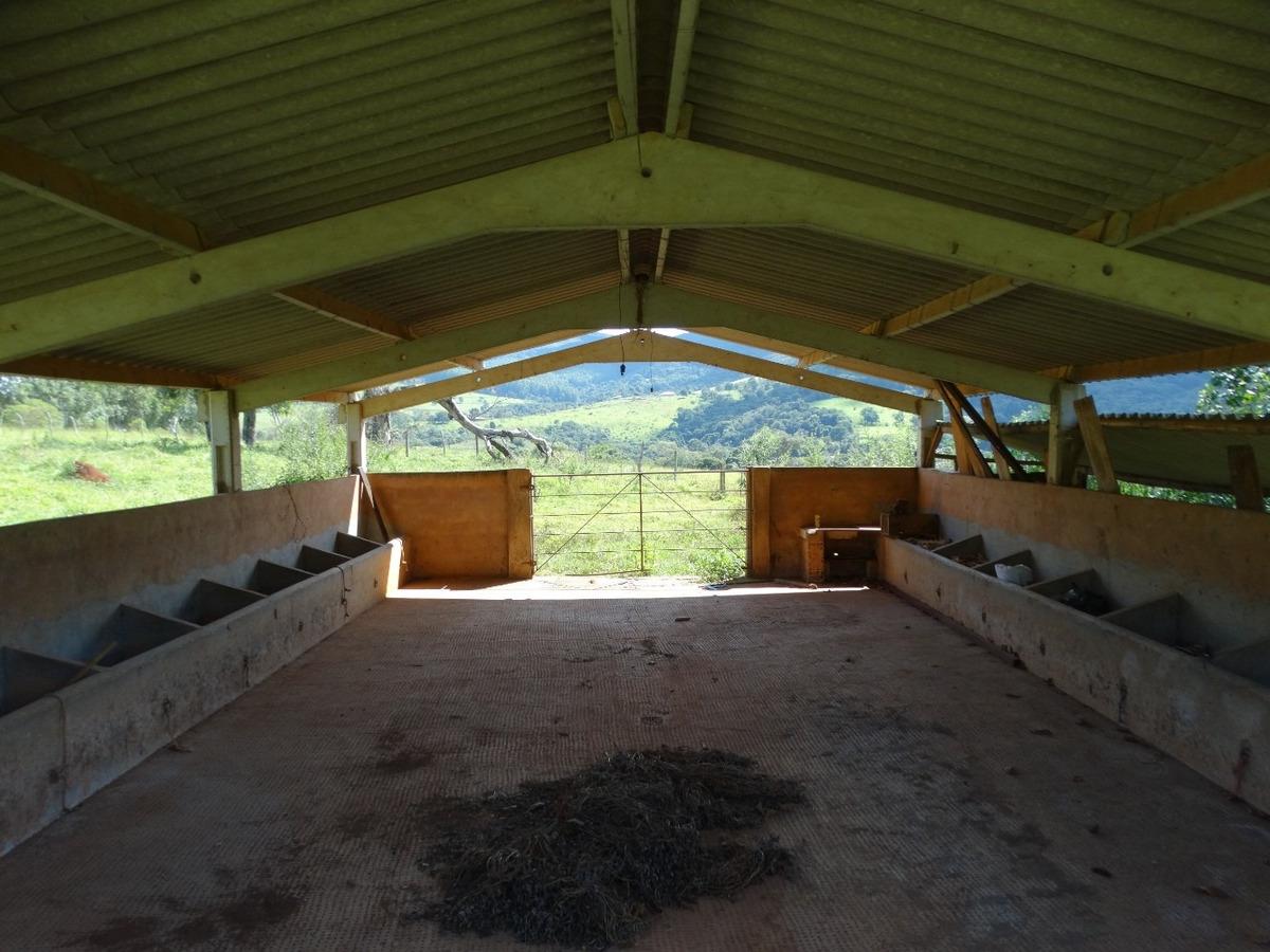 lindo sitio capitólio mg rico em água ! fazenda 14 alqueires