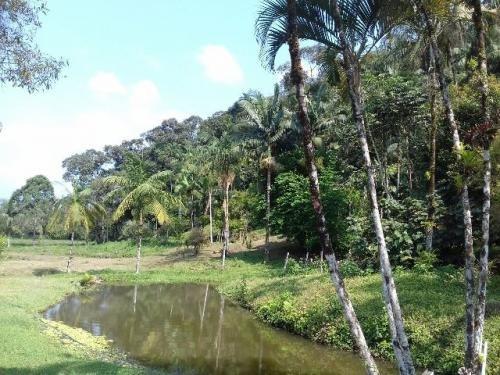 lindo sítio em itanhaém, na mambu (rr)