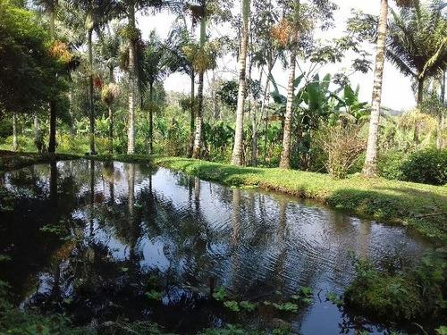lindo sítio para criação de peixe e lazer em itanhaém!