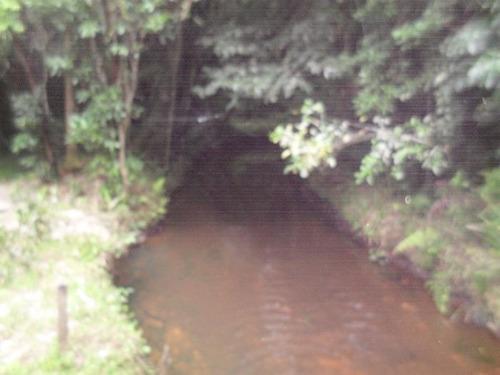 lindo terreno com rio nos fundos | 47877 - 47877