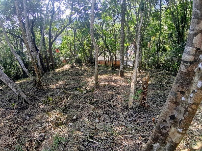 lindo terreno em sambaqui