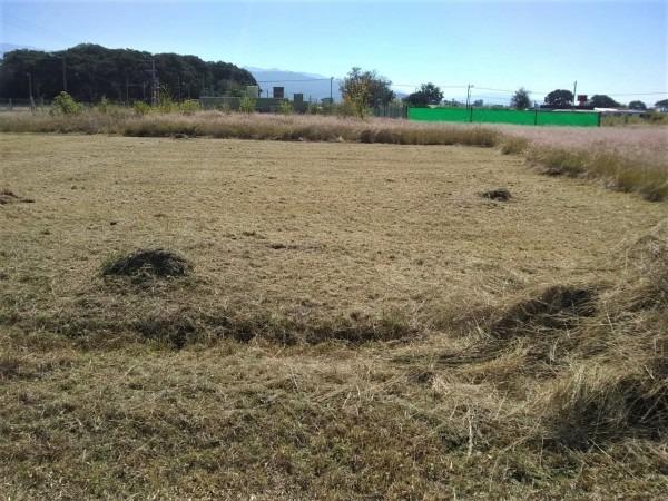 lindo terreno en el  mollar ii  ampliación - 560 m2