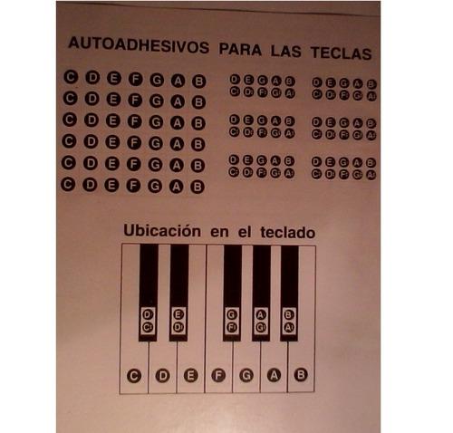 liquido manual aprendizaje del organo electrònico c/stickers