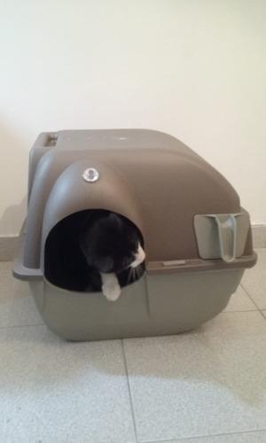 litera gatos cerrada autolimpiante - cat litter box - grande
