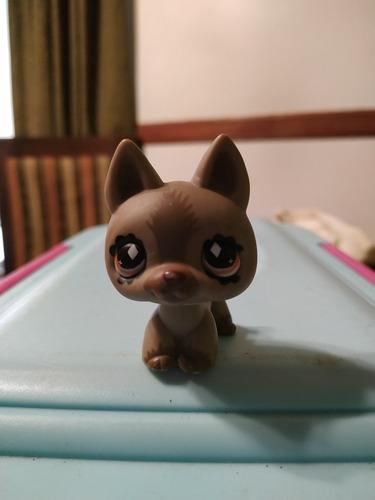 little pet shop perro chocolate