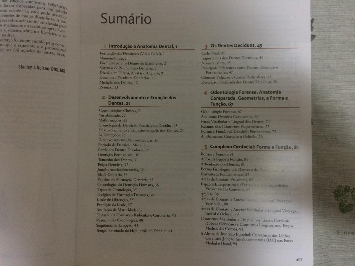 Encantador Anatomía Dental Comparada Molde - Anatomía de Las ...