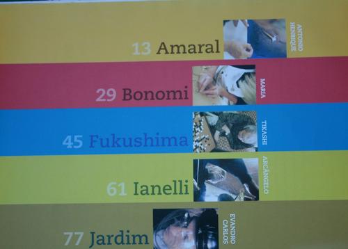livro ateliês brasil bruno giovanetti, leila  kiyomura