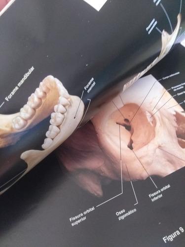 livro atlas fotográfico de anatomia