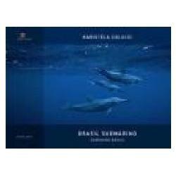 livro: brasil submarino