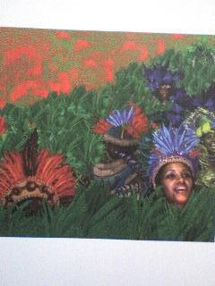 livro: carnaval um outro olhar - marie péjoan -sérgio cabral