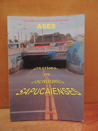 livro coletânea de escritores sapucaienses 2001