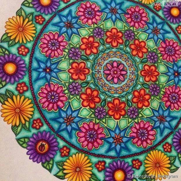 flores jardim secreto:Livro De Colorir Jardim Discreto Secreto Anti Stresse Flores – R$ 22