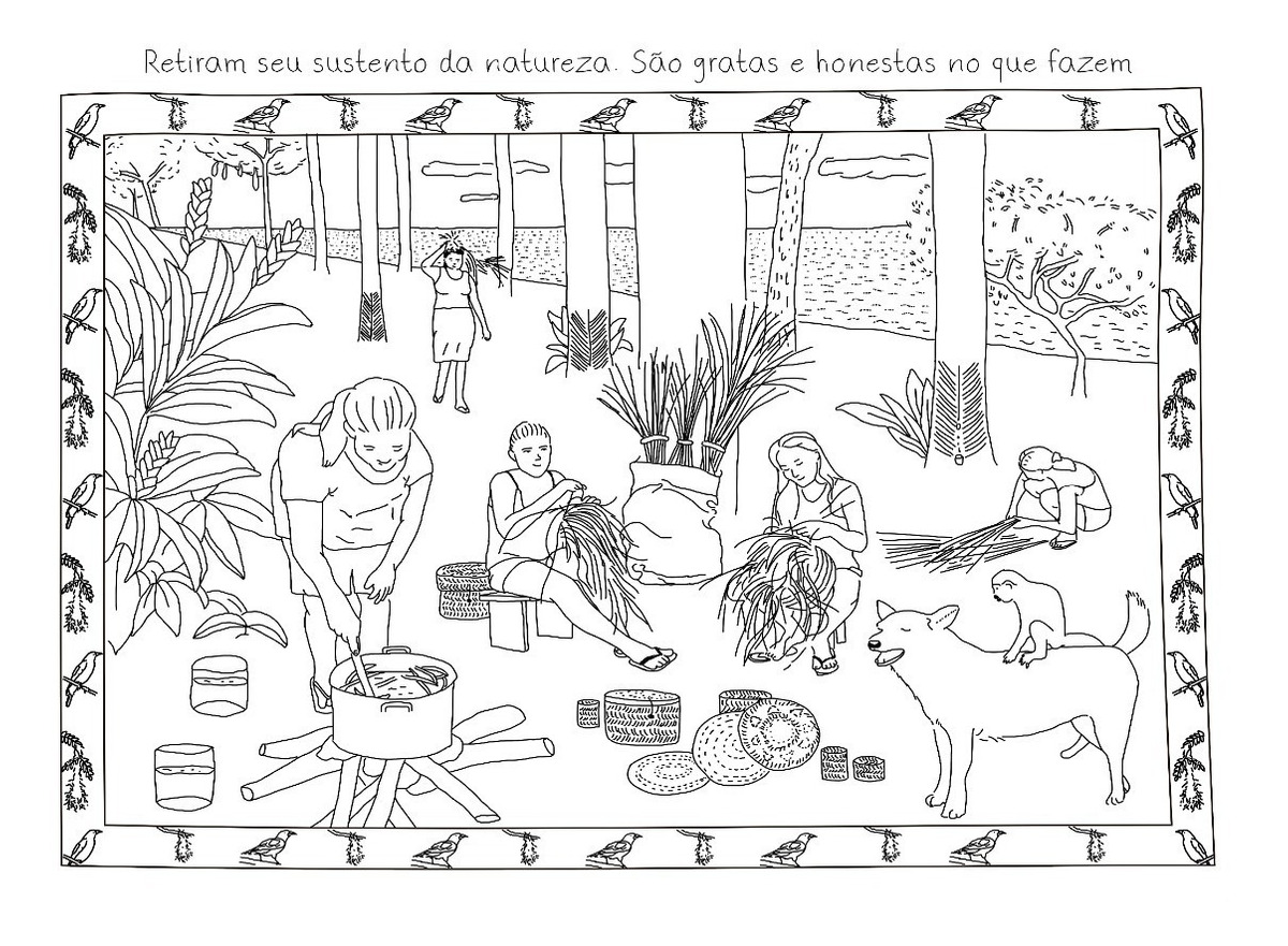Livro De Desenhos Amazônia Encantos Da Natureza P Colorir