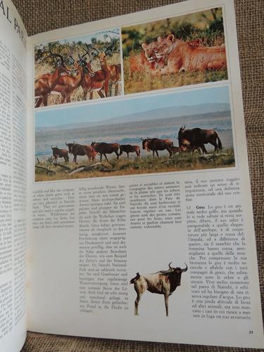 livro karibuni kenya - ines may publicity - kensta