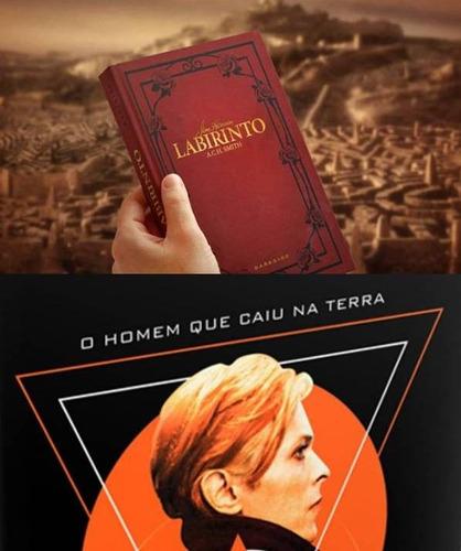 livro o homem que caiu na terra + labirinto +brinde darkside