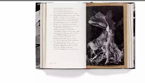 livro odisseia homero edição especial cosac naify capa dura