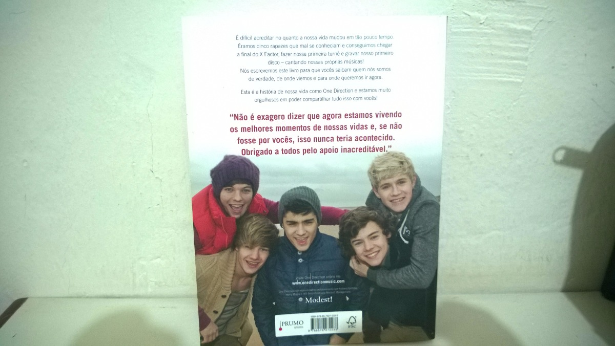 One Direction Dare To Dream Book