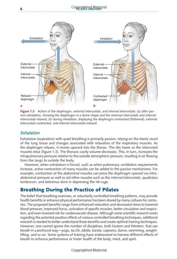 Livro Pilates Anatomy De Rael Isacowitz - R$ 103,90 em Mercado Livre