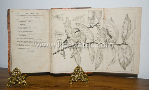 livro raro antigo - compendio de botanica - 1788