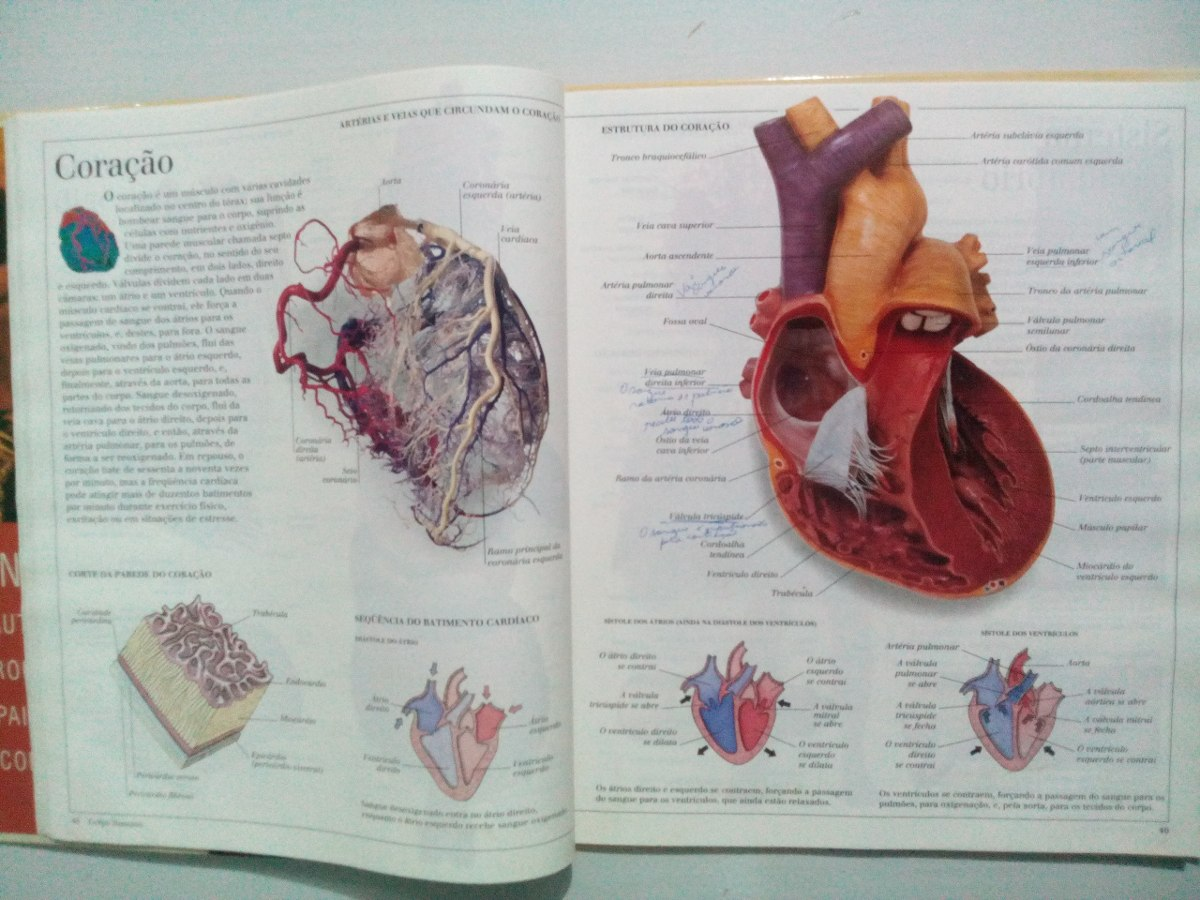 Livro Revista Atlas Visual Corpo Humano E Animais Zero Hora