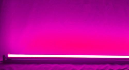 lâmpada led tubular t8 rosa 60cm bivolt aquário