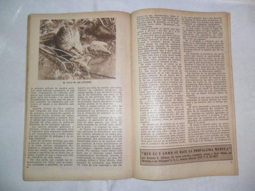 lo que he aprendido de los animales walt disney dibujo 1953