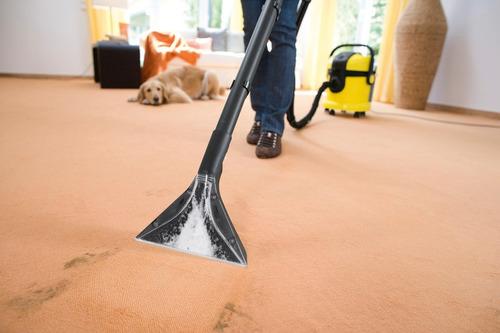 locação extratora limpadora carpete/estofados 120,00 3 dias!