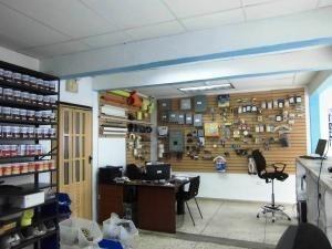 local alquiler centro codflex 20-3291 ursula pichardo