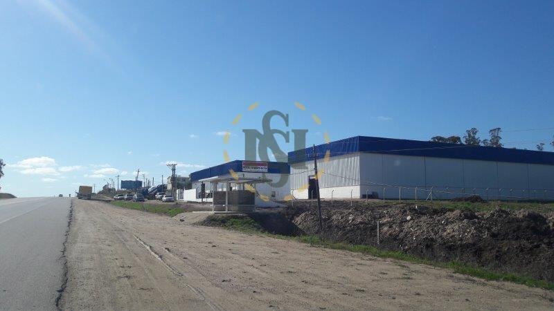 local alquiler ruta 101 ideal depósito / industria