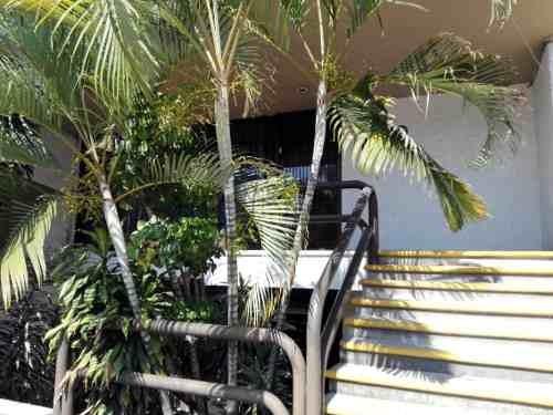 local comercial en lomas de la selva / cuernavaca - grb-553-lc