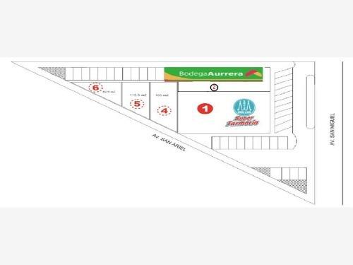 local comercial en renta paseos de san miguel