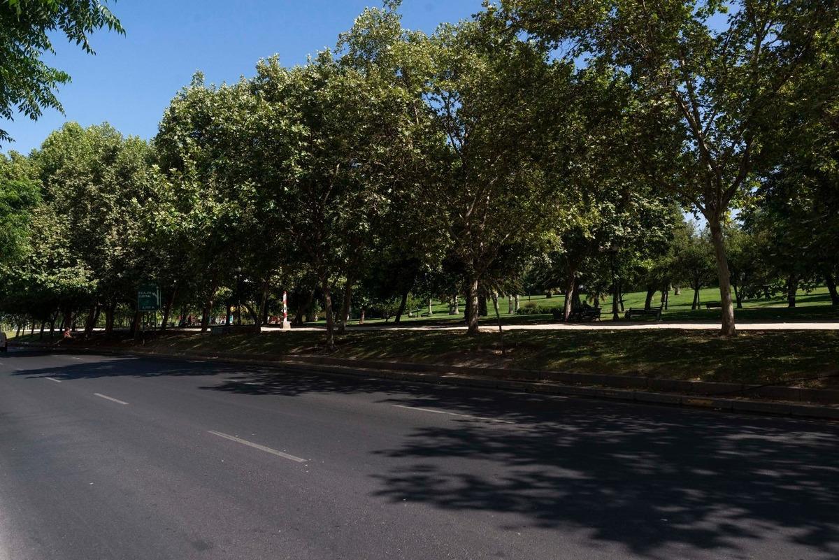 local comercial nuevo en arriendo en edif alto parque frente a parque los reyes.
