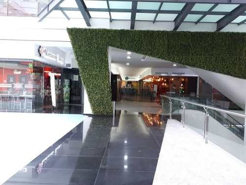 local en exclusiva plaza comercial
