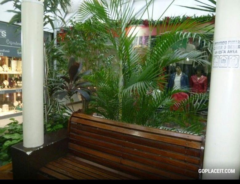 local en galeria en florida al 600