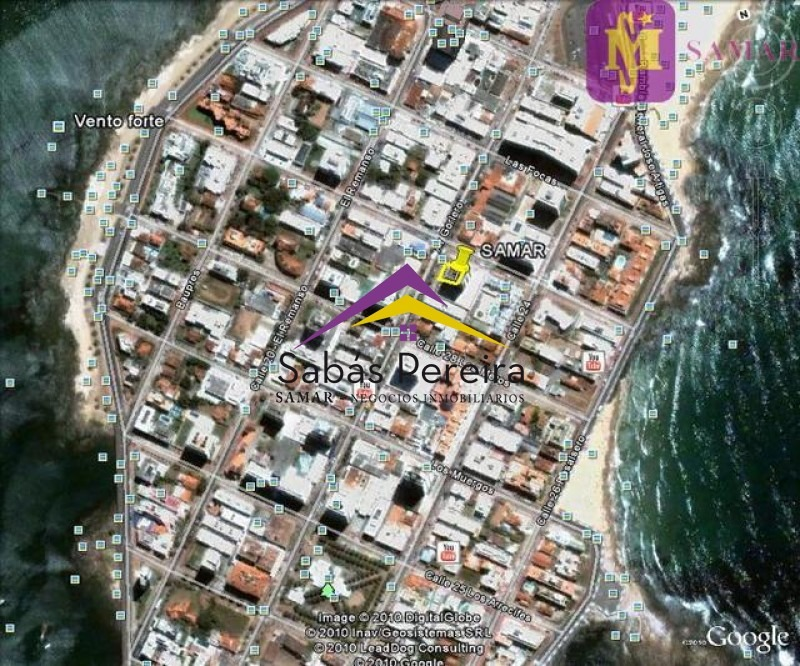 local en punta del este, peninsula   samar ref:37712- ref: 37712