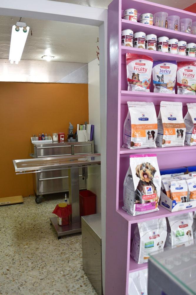local semi equipado para clinica veterinaria