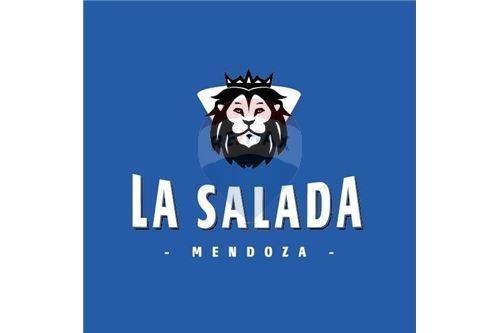 locales comerciales en la  salada mendoza
