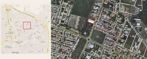 locales en renta en merida en plaza punto 22 col. monterreal folio 132